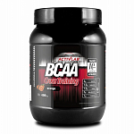 ActivLab BCAA Cross Training, 400 г